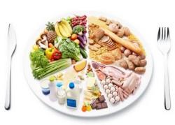 Химический состав пищевых продуктов