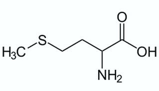 метионин инструкция по применению